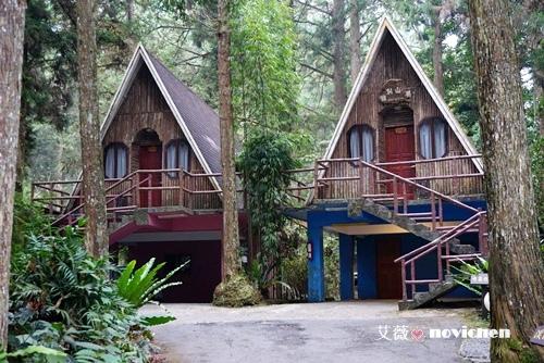 建於杉林林立森林中的小木屋,住宿在此彷佛置身童话森林中.
