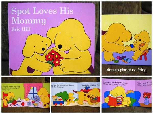 【亲子共读】跟小小孩一同成长的调皮可爱小波系列绘本